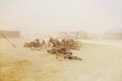 Lituanica Birds Camp. Burning Man 2015
